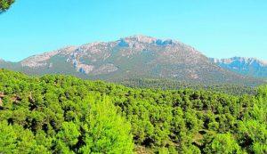 La Región supera las 52.600 hectáreas de parques regionales. / CARM